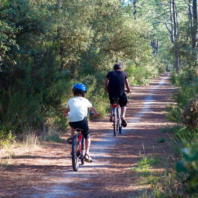 Promenade à vélo en Gironde
